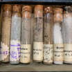 """Seed library"": Seed test tube"