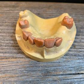 Teeth: upper mandible - imprint