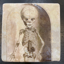 Marble paperweight, coaster: skeletons