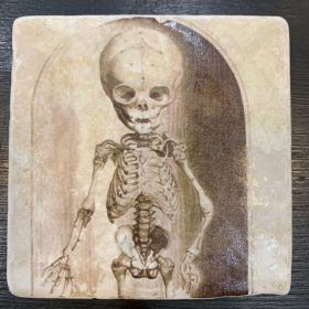 Marble paperweight, coaster: skeletons