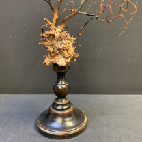 Gorgone arbre sur socle en bois tourné N°2