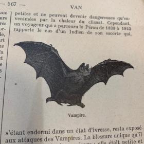 Dictionnaire d'Histoire Naturelle - 1930