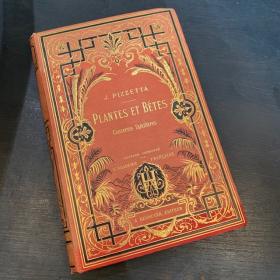 Plantes et bêtes, causeries sur l'Histoire Naturelle par J.Pizzetta - 1882