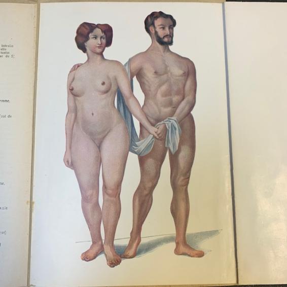 L'homme et la femme: Livret d'anatomie avec planches démontables