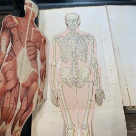 Encyclopédie pratique de médecine & d'hygiène - 1922 TOME 1