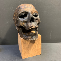 Mummy head: artist reproduction: Red scarf