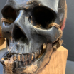 Human skull artist reproduction: Red scarf