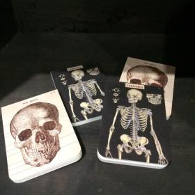 Carnets Mémo Anatomie