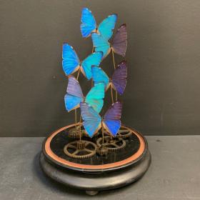 Envolée de Papillons Morpho Aega Steampunk