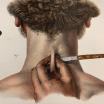 "Anatomy: ""L'Anatomie de L'Homme"" by Bourgery and Jacob -1837/1843"