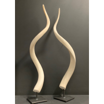 Koudou polished horn bone on pedestal