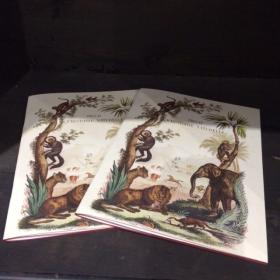 Cahier Piqûres A5 Histoire Naturelle
