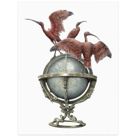 """""""Globe"""": Impression réalisée par Steeven Salvat"""