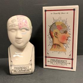 Petite Tête de Phrénologie en porcelaine craquelée (0306)