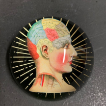 Phrenology Paper Weight