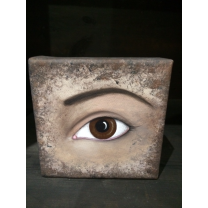 Painted Canvas: Brown Eye