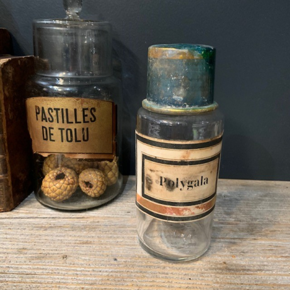 Polygala: Pharmacy bottle 19th