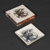 CURIOS: Fine bone china porcelain trinket tray: Octopus