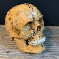 Memento Mori in Wood - Articulated skull in wood and bone