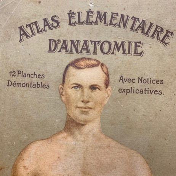 "Removable board ""Elementary Anatomy Atlas"" by Vigot Frères éditeurs"