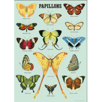 Butterflies vintage poster