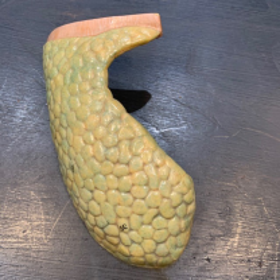 Poumon Droit - Pièce anatomique en caoutchouc peint