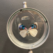 Butterfly in magnifying glass : Perisama albipennis - Naturalist magnyfier