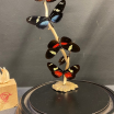 Flight of butterflies: Heliconius family under glass dome
