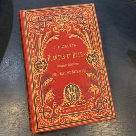 Plantes et bêtes, causeries sur l'Histoire Naturelle by J.Pizzetta circa 1880