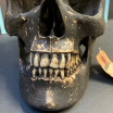 Human skull - Replica by artist Jérôme Cavailles - From the catacombs with perforating hole