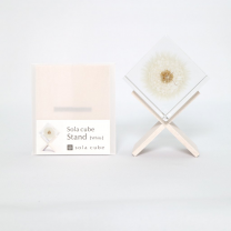 Display stand for resin botanical inclusion - Sola Cube - Beech wood