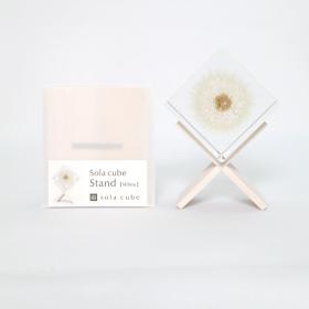 Présentoir pour inclusion botanique en résine - Sola Cube - En bois de hêtre