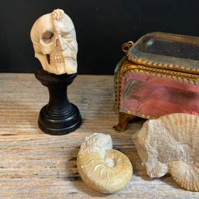 Janus - Half face and half skeleton - Memento Mori - antlers carving