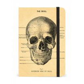 Notebook - carnet avec élastique: Le Crâne