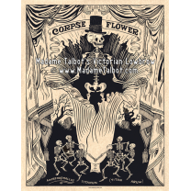 Affiches gothiques victoriennes