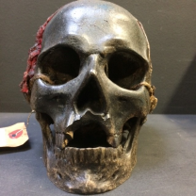 Crâne Skull 3