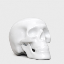 Little fine bone china human skull