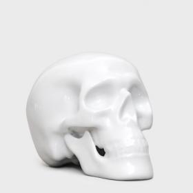 Little fine bone china human skull