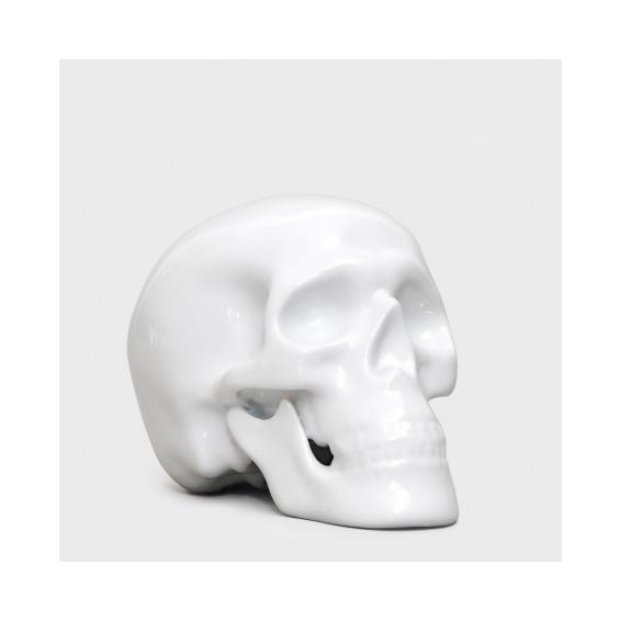 Fine bone china human skull
