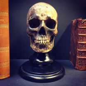 Crâne Skull 2