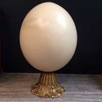 Ostrich's egg on base in brass