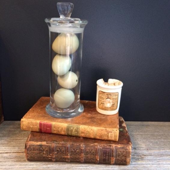 Museum jar of pheasant's egg