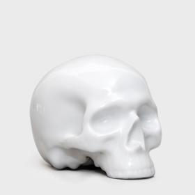 Enamelled porcelain human vanity