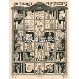 Affiches gothiques victoriennes Madame Talbot: Le Cabinet de Curiosités