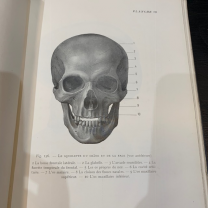 Treaty of Human osteology - Atlas - Paris 1947