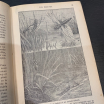 Old book: Zoology and botany 1924