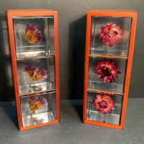 Display for Sola Cube 3 boxes.