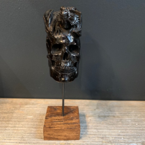 Skull carved with Dragon in Buffalo horn - Memento Mori